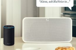 bluesound alexa