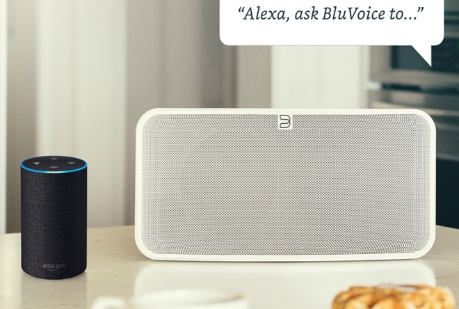 bluesound alexa